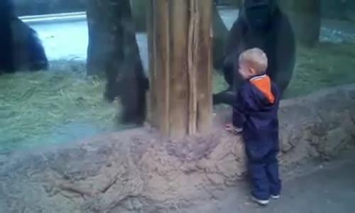 Деца в зоопарк!