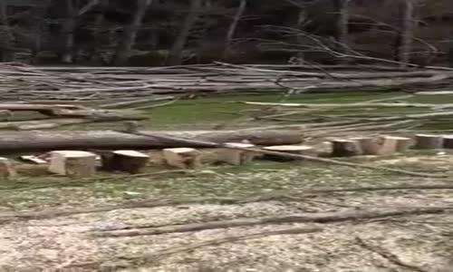 Машини за цепене на дърва