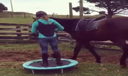 Възсядане на коня